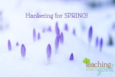 winter-spring.jpg